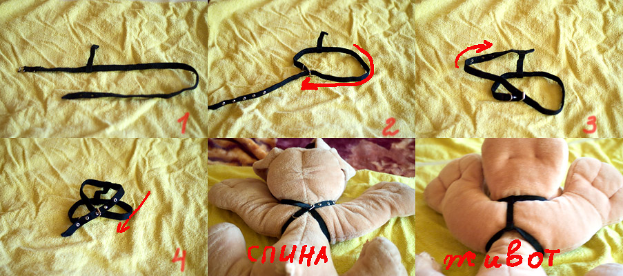как одеть шлейку на кота пошаговая инструкция фото img-1
